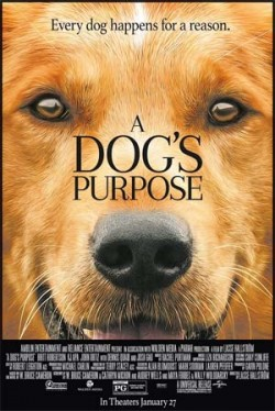 Teen Movie Night: A Dog's Purpose (PG)